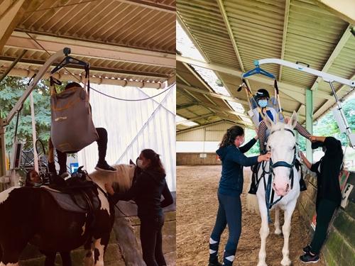 Les adhérents s'installent sur les chevaux encadrés par le staff UCPA